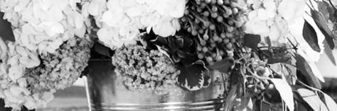 cropped-wedding-website-2.jpg